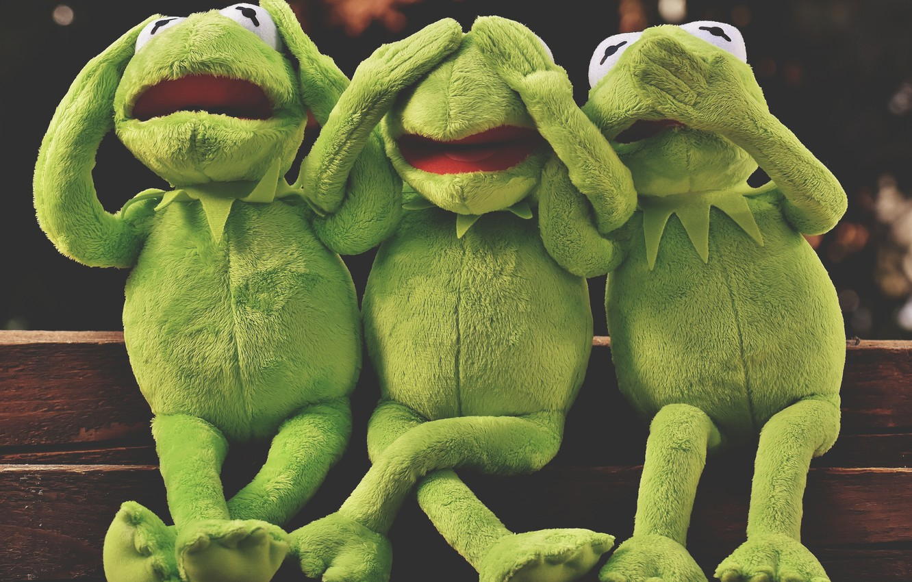 Wallpaper Emotions The Muppets Do Not Say Anything Can T
