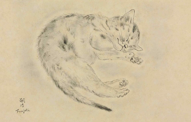 Photo wallpaper paper, 1928, Tsuguharu Foujita, pen and ink, Sleeping cat, blur grey