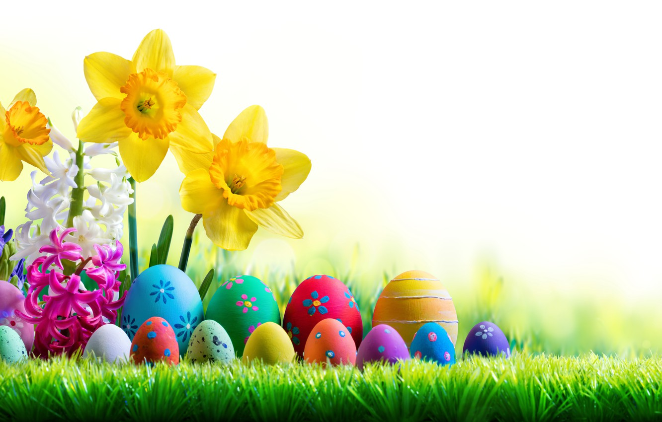 Photo wallpaper the sky, grass, the sun, flowers, spring, Easter, flowers, daffodils, spring, Easter, eggs, decoration, Happy, …