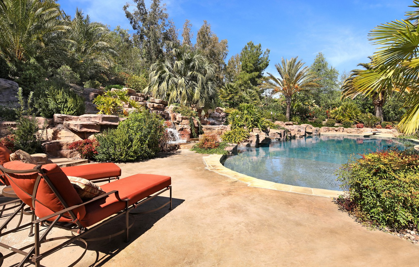 Photo wallpaper greens, the sun, trees, stones, palm trees, stay, pool, garden, chaise, pillow, resort, the bushes