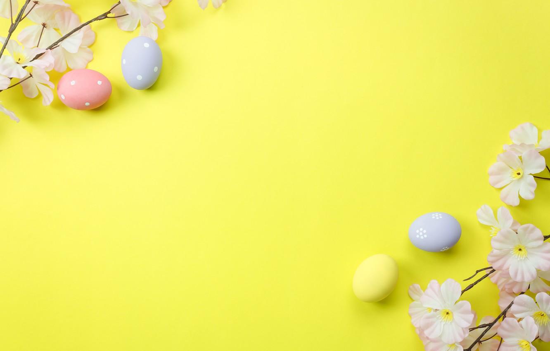 Photo wallpaper flowers, background, eggs, spring, Easter, blossom, flowers, spring, Easter, eggs, decoration, Happy, tender