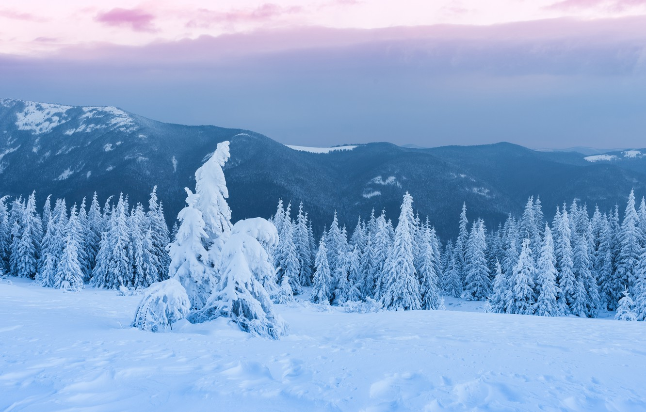 Photo wallpaper winter, forest, the sky, clouds, snow, landscape, mountains, clouds, overcast, hills, tops, beauty, tale, ate, …