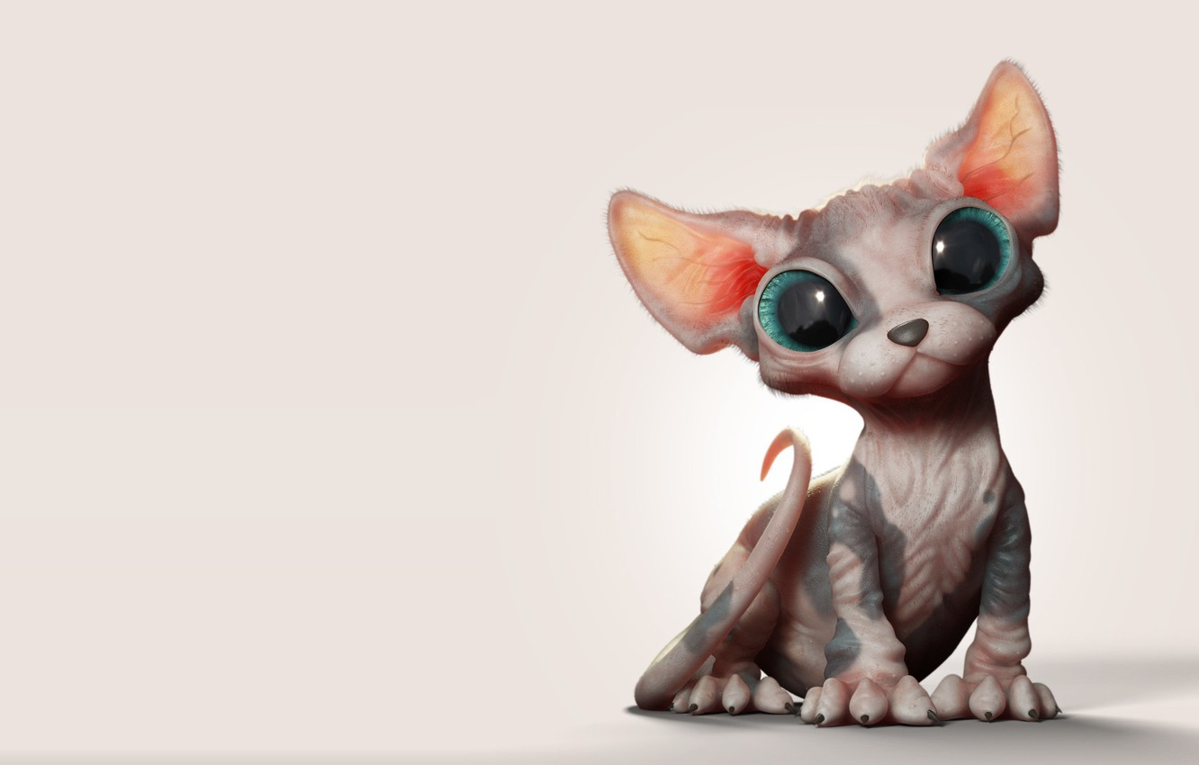 Photo wallpaper baby, art, kitty, Sphinx, Marcos Nicacio, Sphynx Kitten