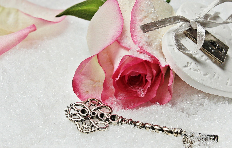 Photo wallpaper love, rose, heart, winter, snow, key, romantic, lock