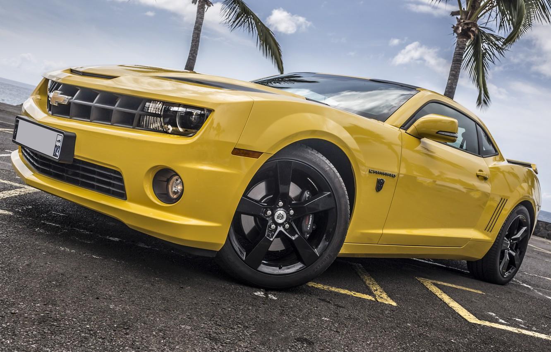 Photo wallpaper Chevrolet, Camaro, Yellow, Palms