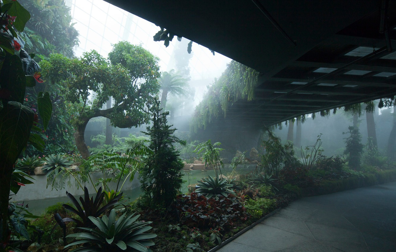 Photo wallpaper Singapore, Singapore, Botanical garden, Gardens By The Bay, Cloud Forest