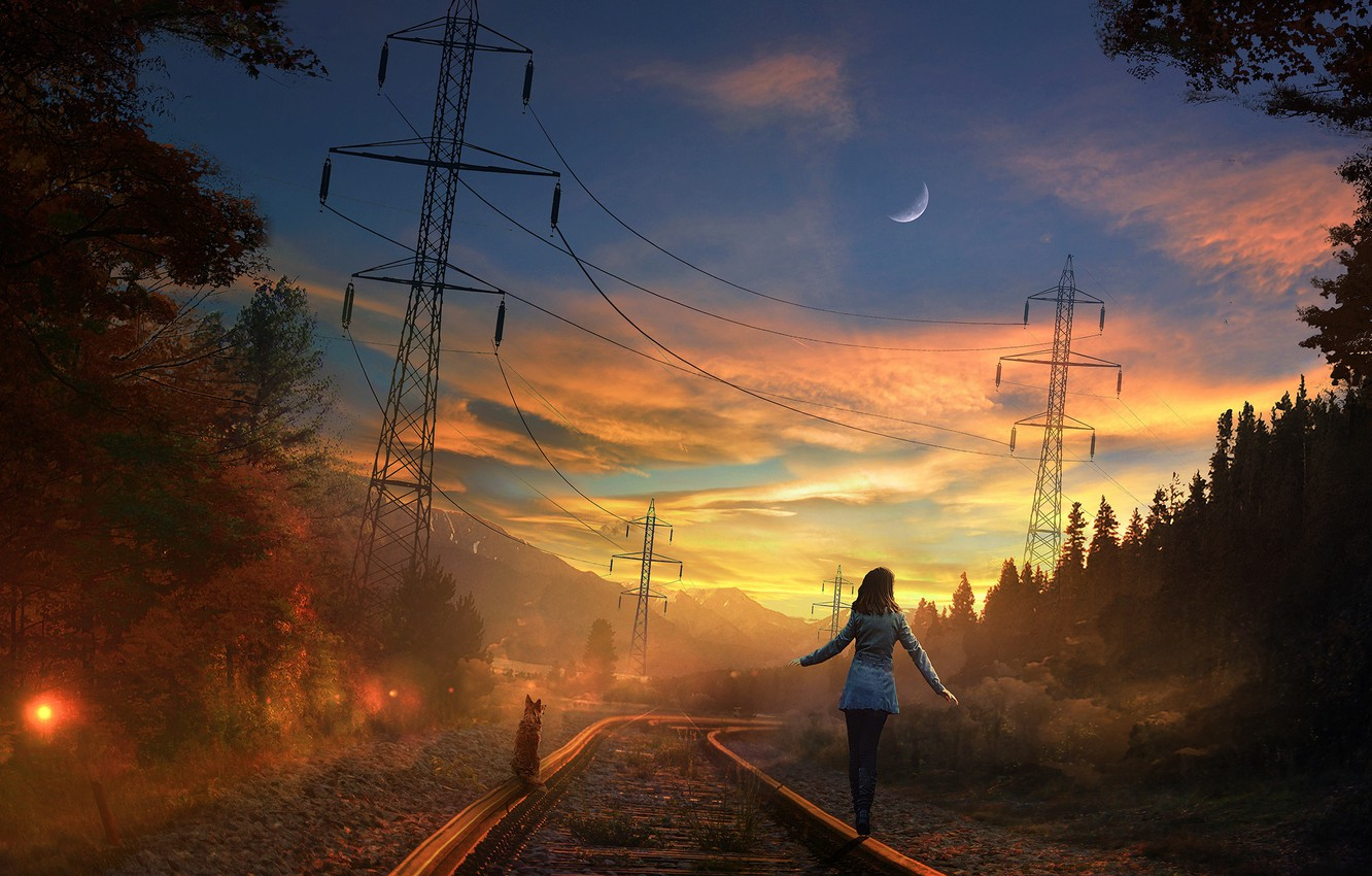 Photo wallpaper road, forest, the sky, cat, girl, sunset, the moon, rails, the evening, art, railroad