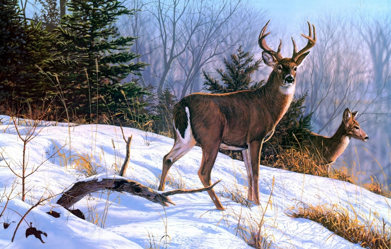 Photo wallpaper Nature, Winter, Painting, Deer