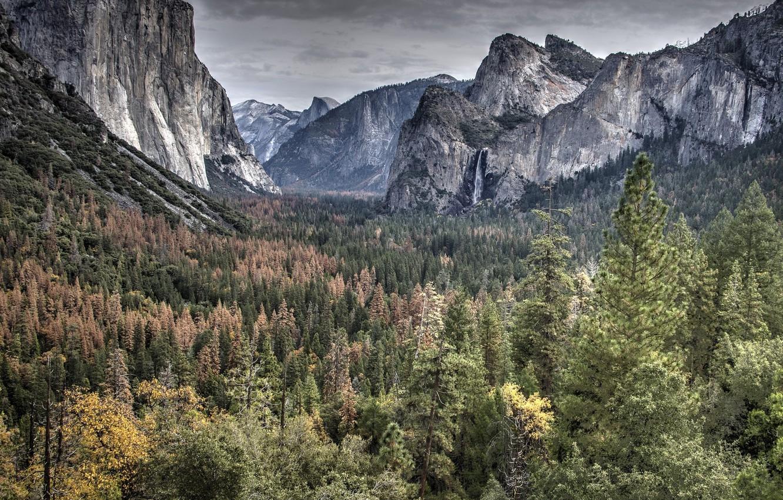 Photo wallpaper the sky, trees, mountains