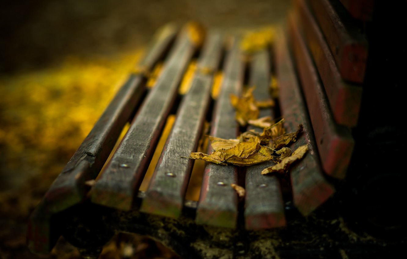 Photo wallpaper autumn, leaves, bench