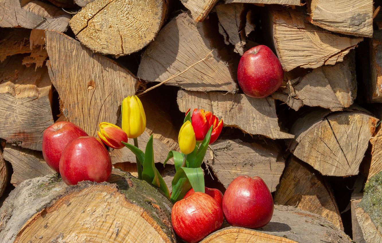 Photo wallpaper Flowers, Tulips, Apples