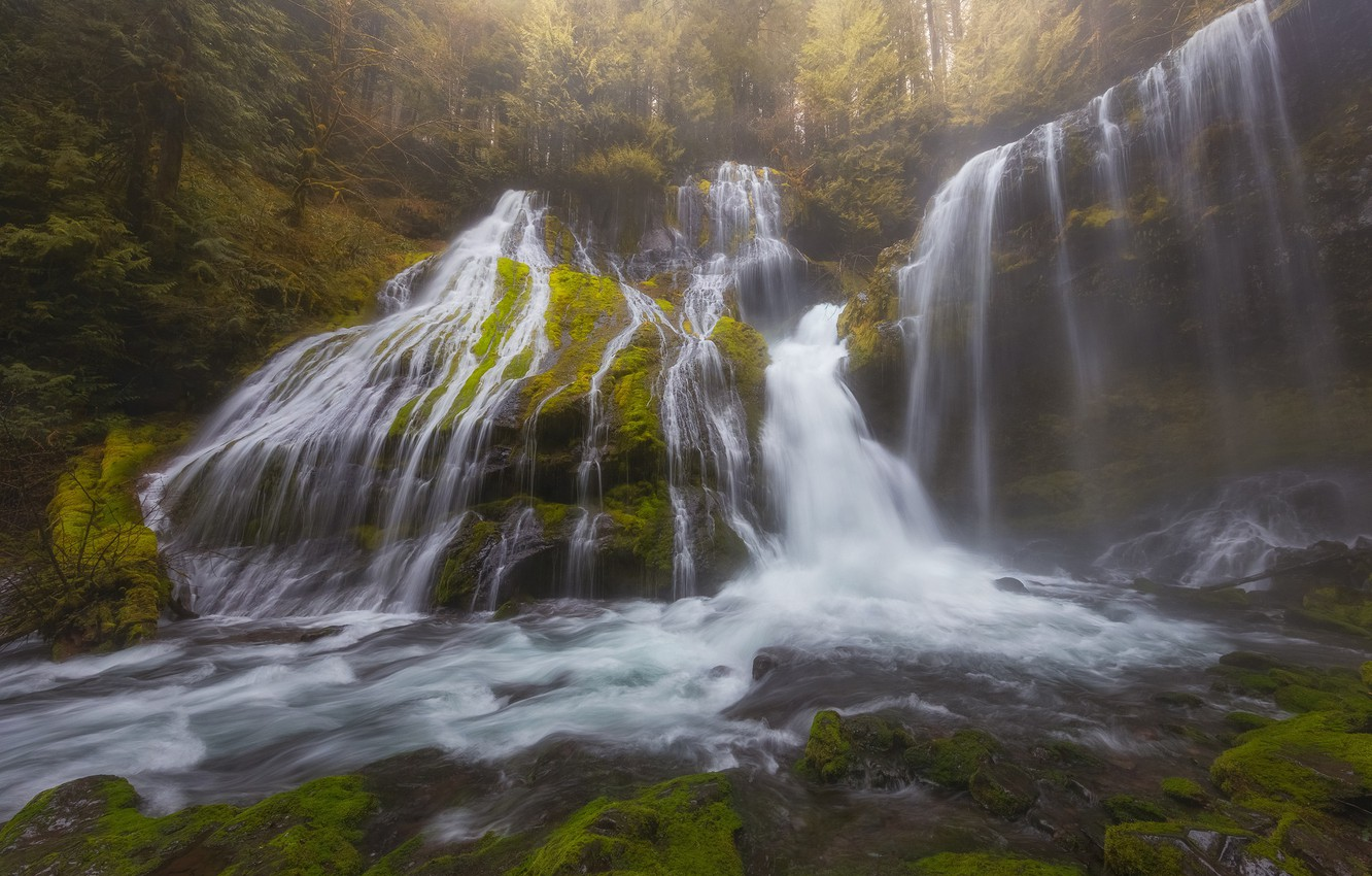 Photo wallpaper forest, waterfall, cascade, Washington, Washington, Columbia River Gorge, Panther Creek Falls, Gifford Pinchot National Forest, …