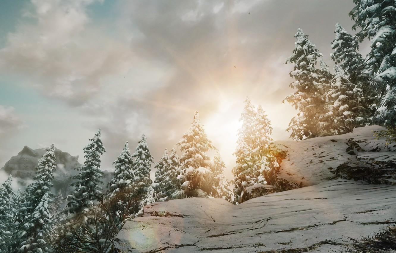 Photo wallpaper the sun, snow, nature, Winter, ate