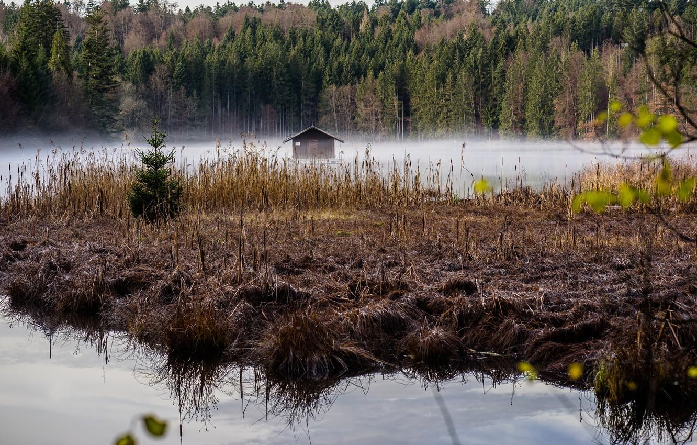 Photo wallpaper autumn, hut, Germany, Bayern, haze, Hackensee