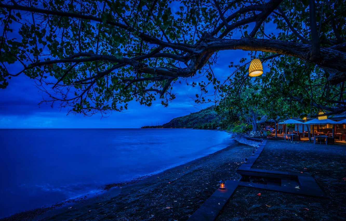 Photo wallpaper sea, branches, lights, tropics, tree, coast, foliage, the evening, horizon, Indonesia, lights, resort, Bali