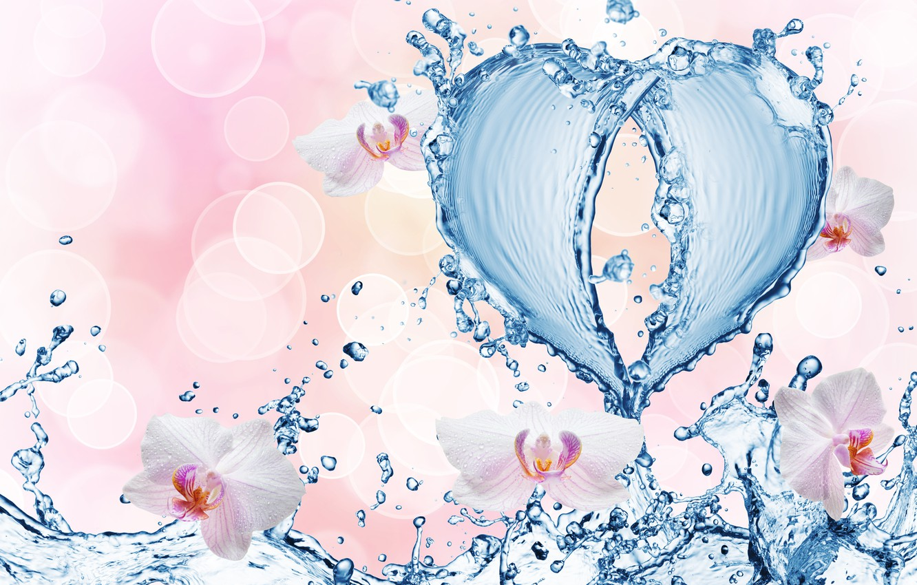 Photo wallpaper water, drops, flowers, squirt, pattern, heart, orchids