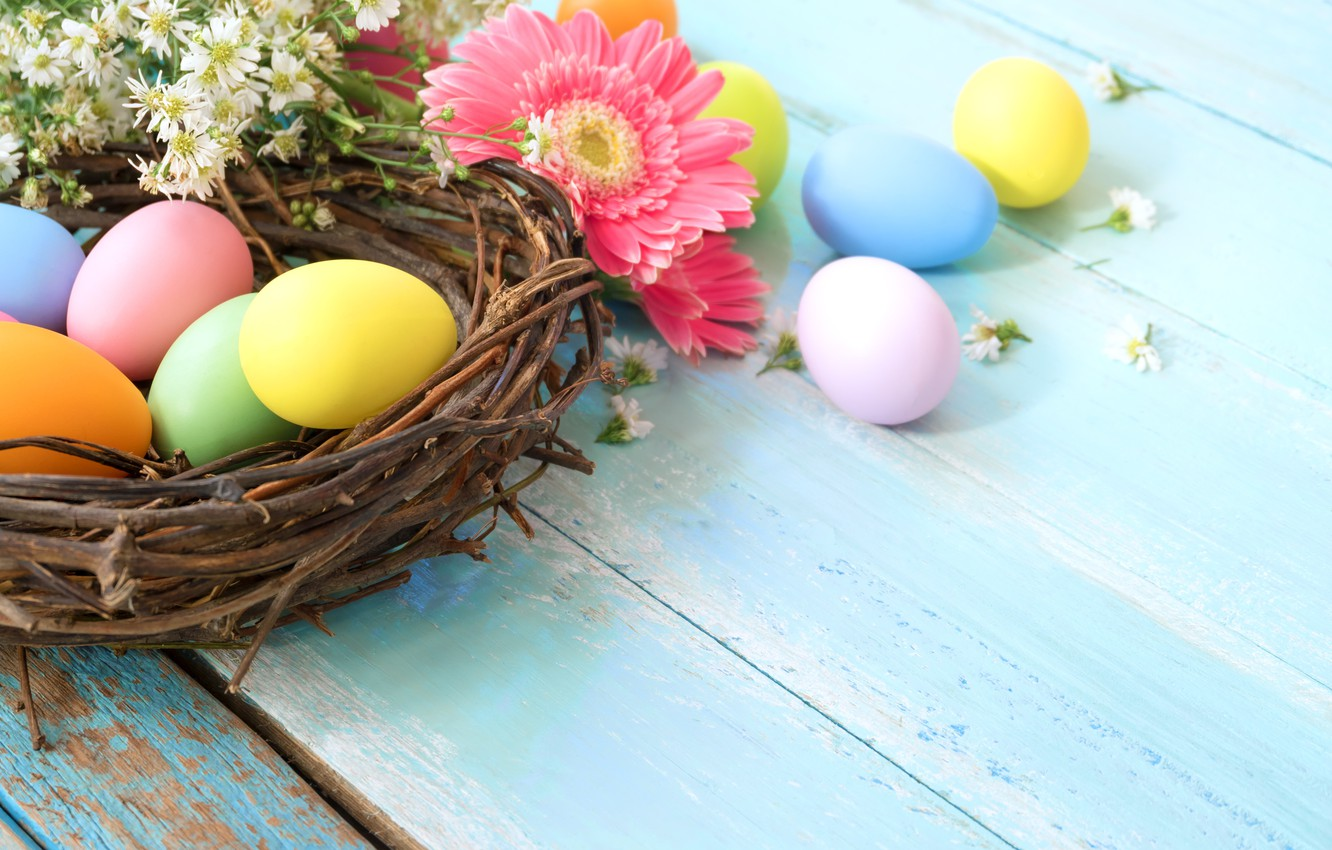 Photo wallpaper flowers, basket, eggs, spring, colorful, Easter, gerbera, wood, pink, flowers, tulips, spring, Easter, eggs, decoration, …