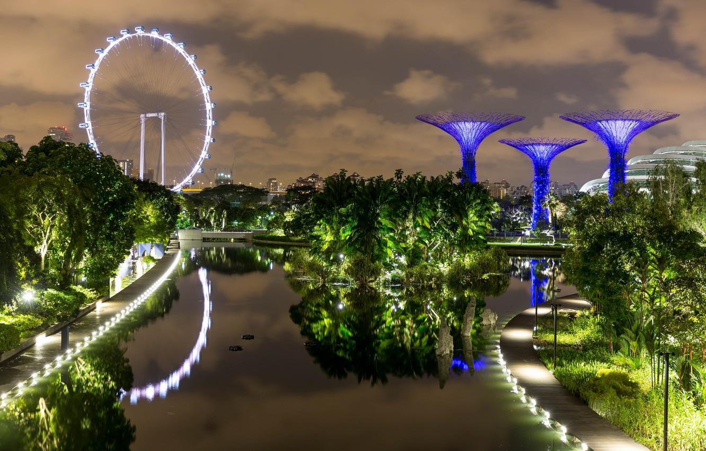 Photo wallpaper night lights, Singapore, Singapore, night lights