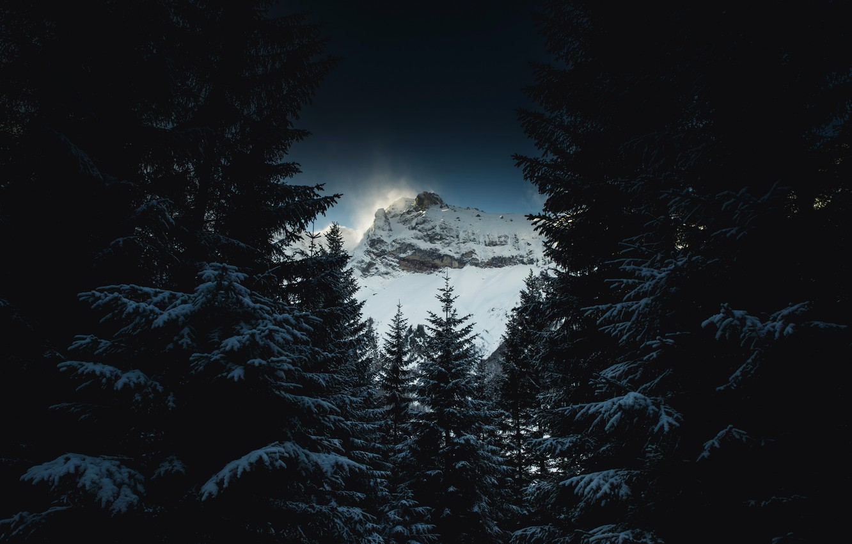 Photo wallpaper winter, forest, mountain