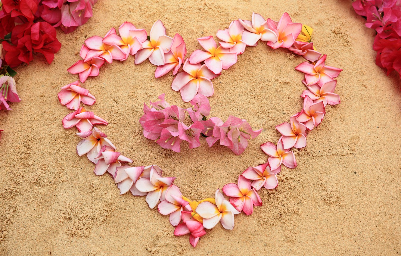 Photo wallpaper sand, beach, flowers, heart, love, beach, heart, pink, flowers, romantic, sand, plumeria, plumeria, floral