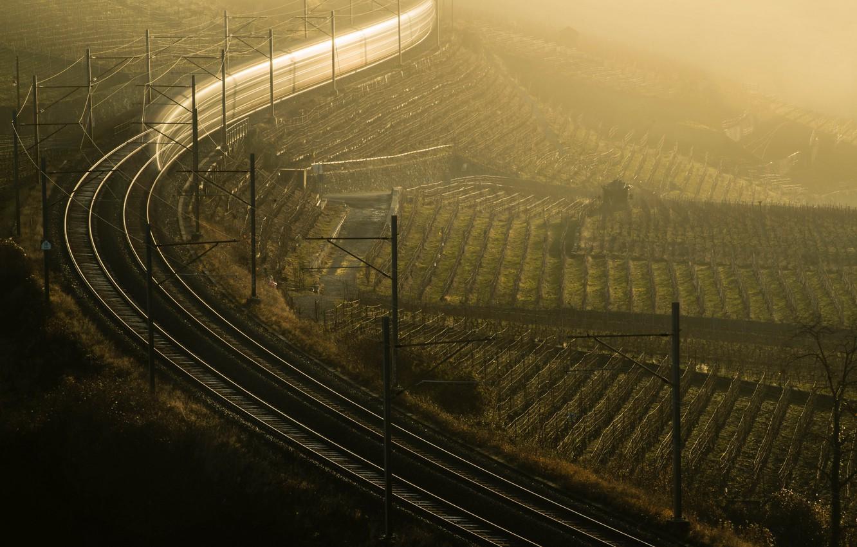 Photo wallpaper fog, morning, railroad