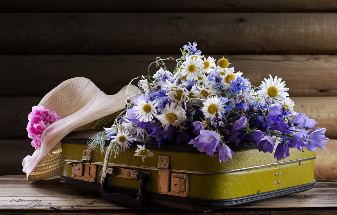 Photo wallpaper bells, chamomile, forget-me-nots, hat, suitcase