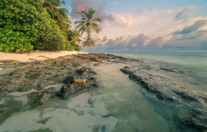 Photo wallpaper beach, summer, tropics, palm trees, Sea