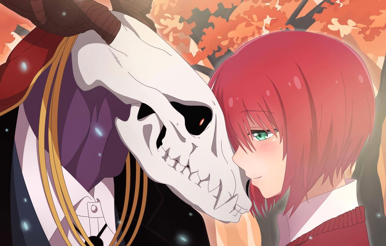 Photo wallpaper girl, skull, anime, art, Mahou Tsukai no Yome, The Ancient Magus' Bride, Bride of the …