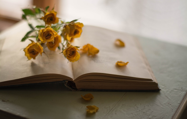 Photo wallpaper Flowers, Book, Roses