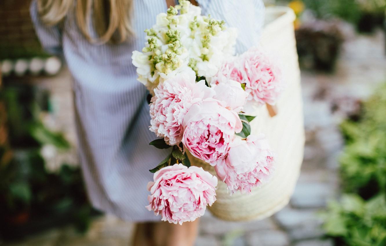 Photo wallpaper flowers, pink, peonies
