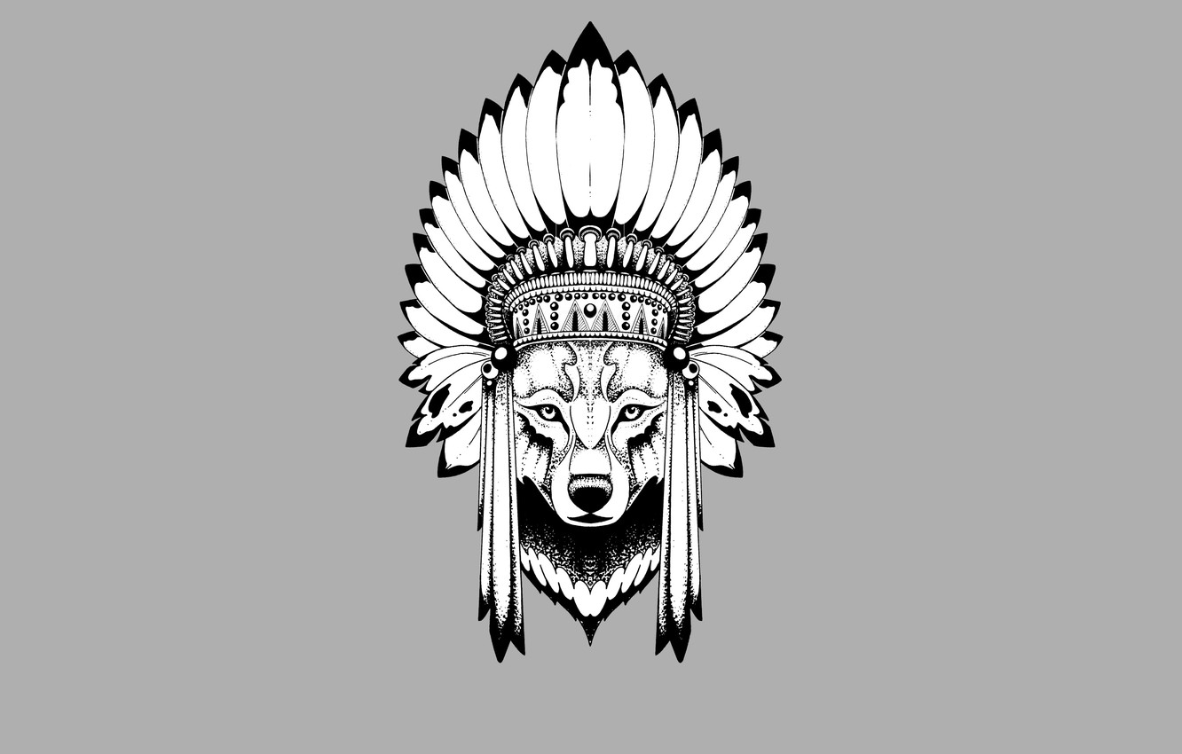 Photo wallpaper wolf, minimalism, head, feathers, Indian, wolf, indian