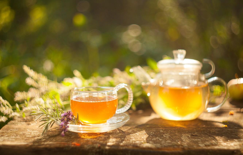 Photo wallpaper green, tea, drink