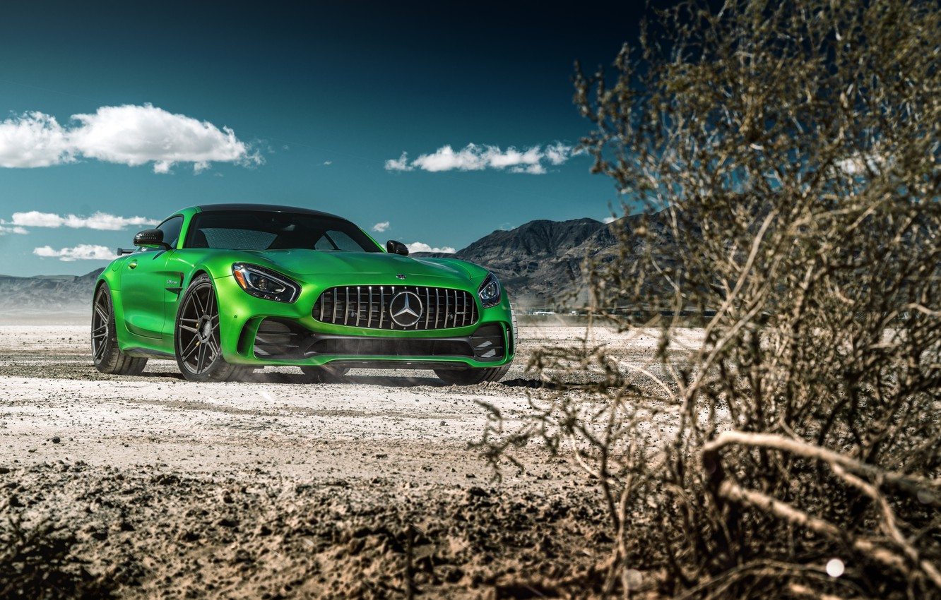 Photo wallpaper the sky, nature, green, style, the bushes, the front, Mercedes GTR