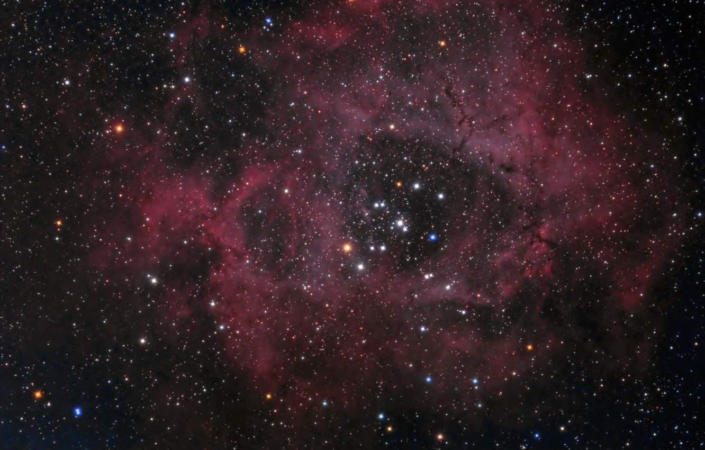 Photo wallpaper Unicorn, in the constellation, The Rosette Nebula