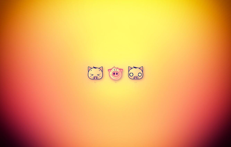 Photo wallpaper cat, dog, funny, pig