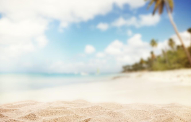 Photo wallpaper sand, palm trees, blur, blur