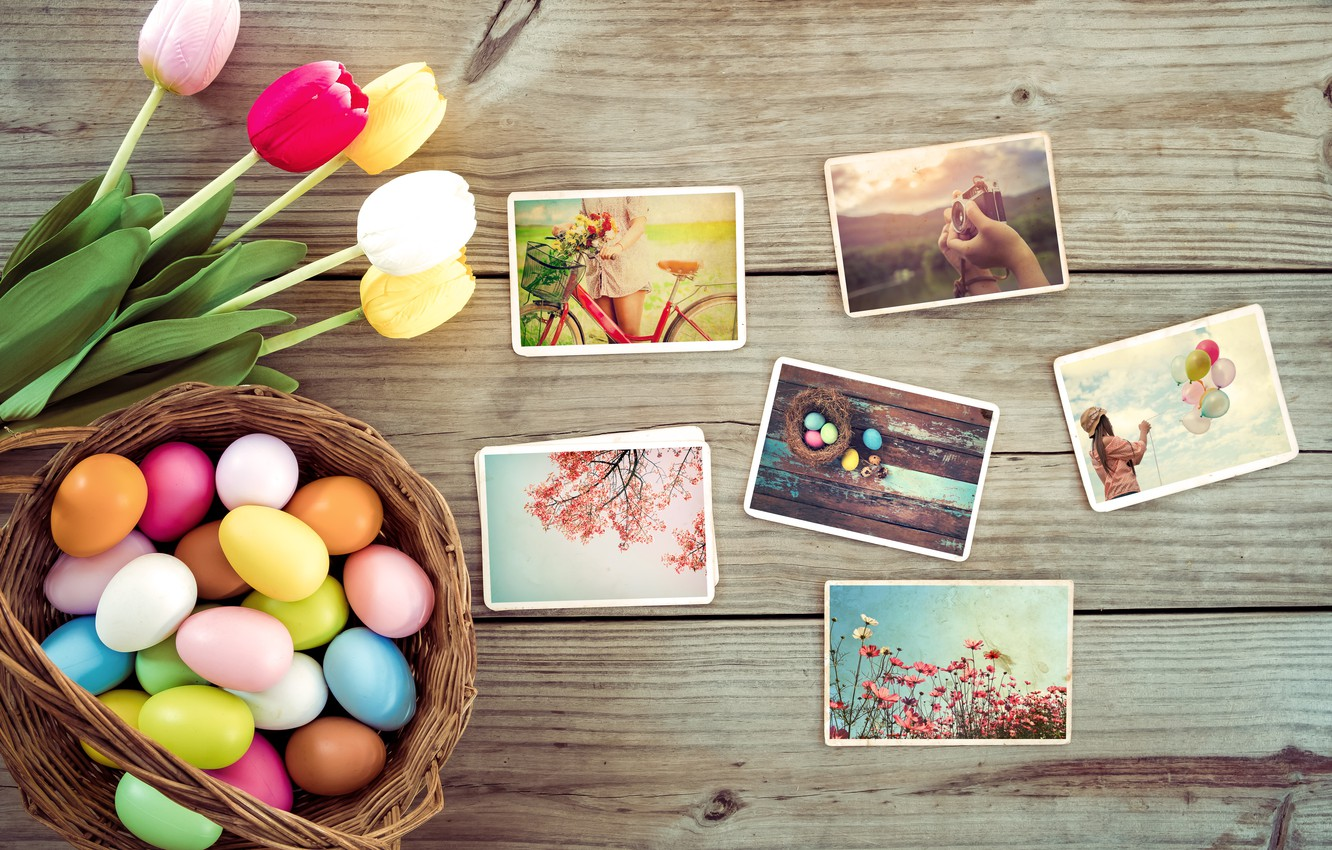 Photo wallpaper flowers, photo, eggs, spring, colorful, Easter, tulips, wood, pink, flowers, tulips, spring, Easter, eggs, decoration, …