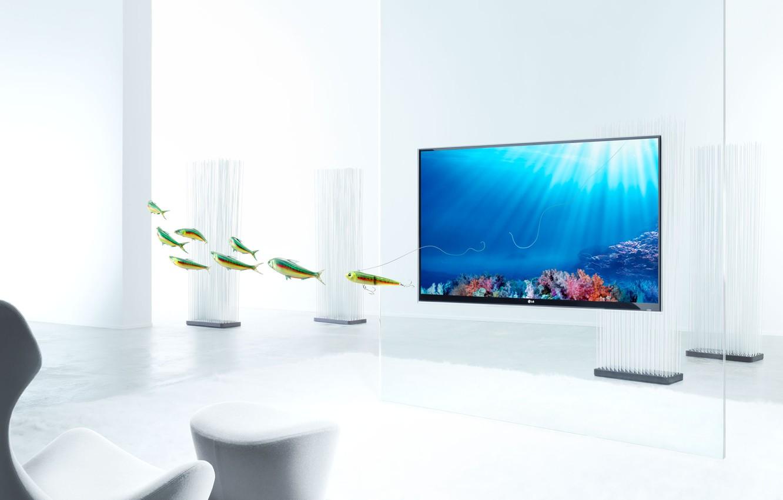 Photo wallpaper fish, TV, Christophe Gilbert