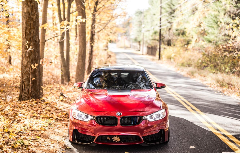 Photo wallpaper BMW, Autumn, RED, F82