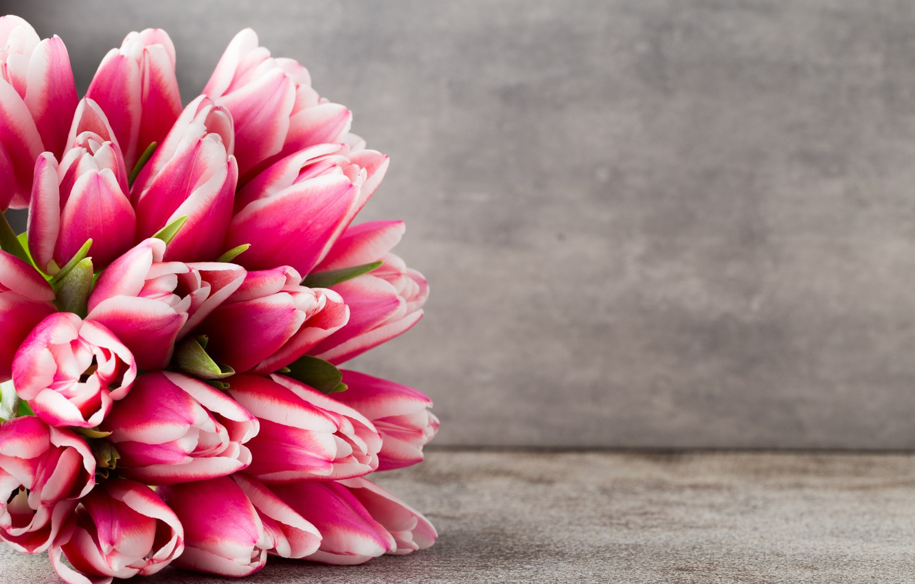 Photo wallpaper flowers, bouquet, tulips, pink, fresh, pink, flowers, beautiful, tulips, spring