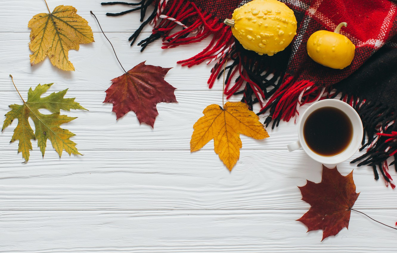 Photo wallpaper autumn, leaves, coffee, scarf
