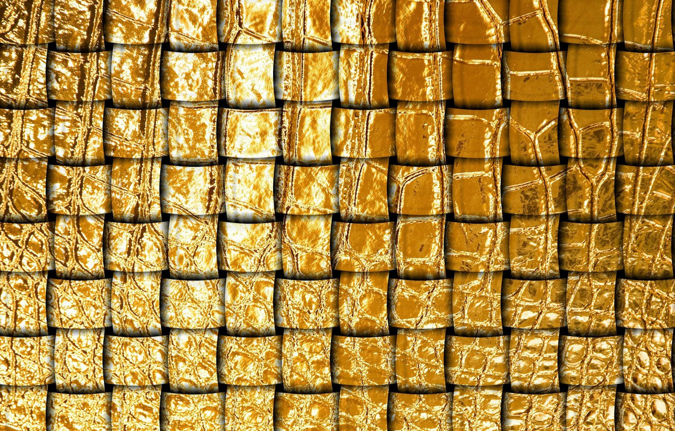 Photo wallpaper texture, network, gold leather, leather tape