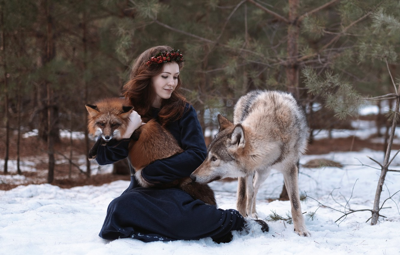 Photo wallpaper girl, wolf, Fox