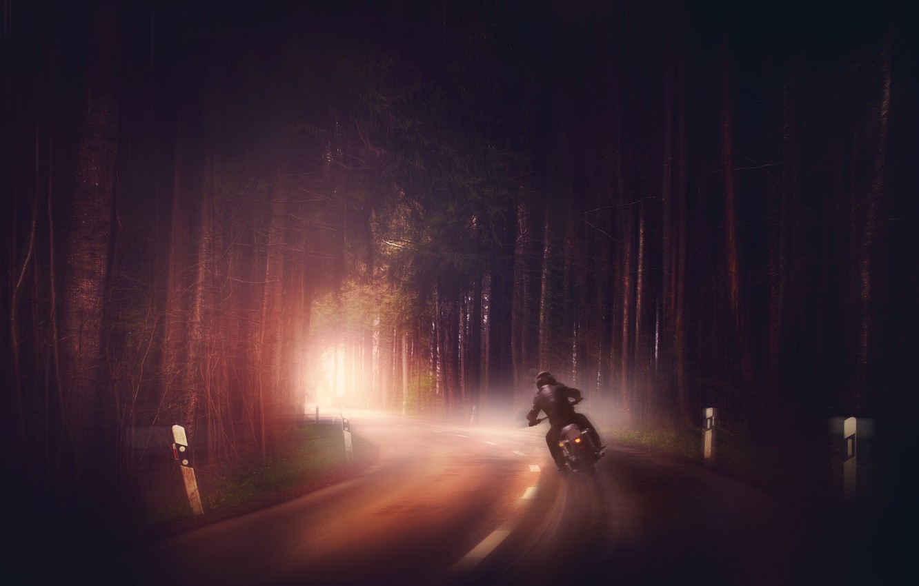Photo wallpaper road, forest, fog, motorcycle
