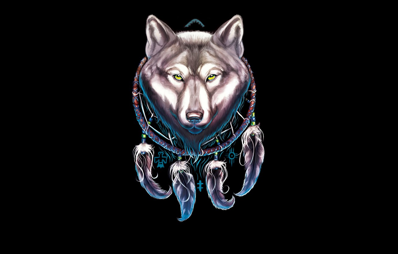 Wallpaper Dream Catcher Dreamcatcher Wolf Wolf The Dark