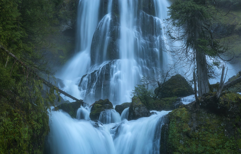 Photo wallpaper trees, stones, waterfall, cascade, Washington, Washington, Columbia River Gorge, Falls Creek Falls, Gifford Pinchot National …