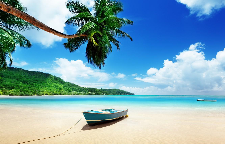 Photo wallpaper sea, tropics, Palma, boat