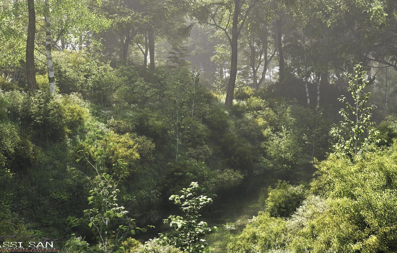 Photo wallpaper forest, nature, river, vegetation, Dutch polder