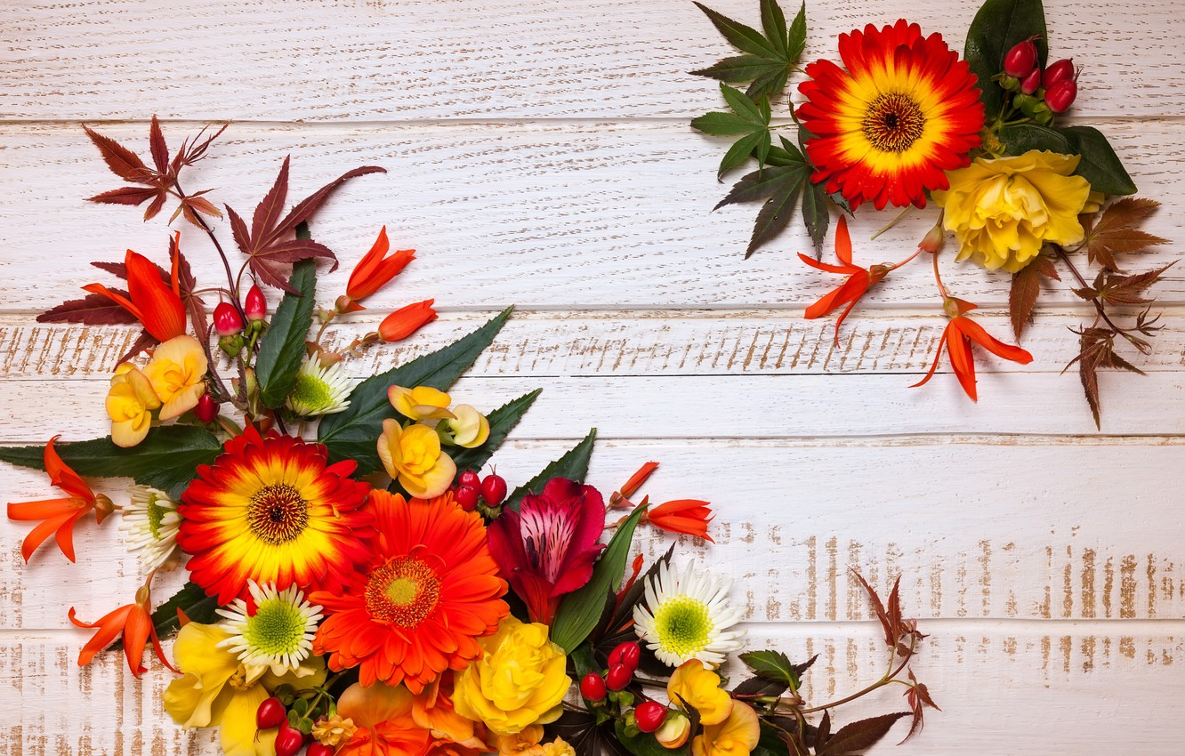 Photo wallpaper autumn, leaves, flowers, wood, flowers, autumn, leaves, composition, frame, floral