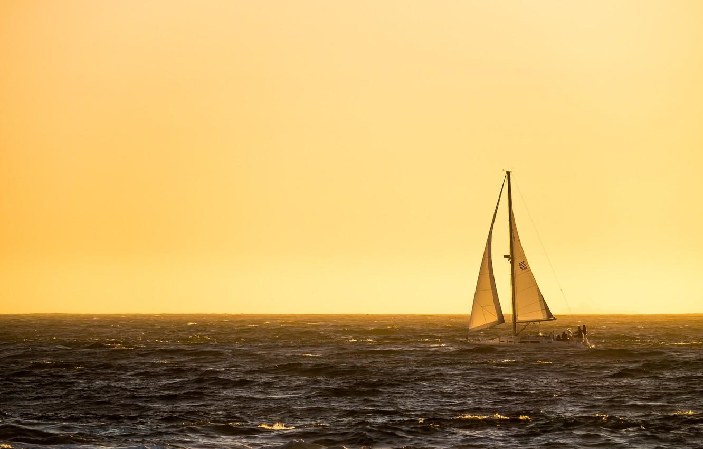 Photo wallpaper sea, morning, yacht, sails